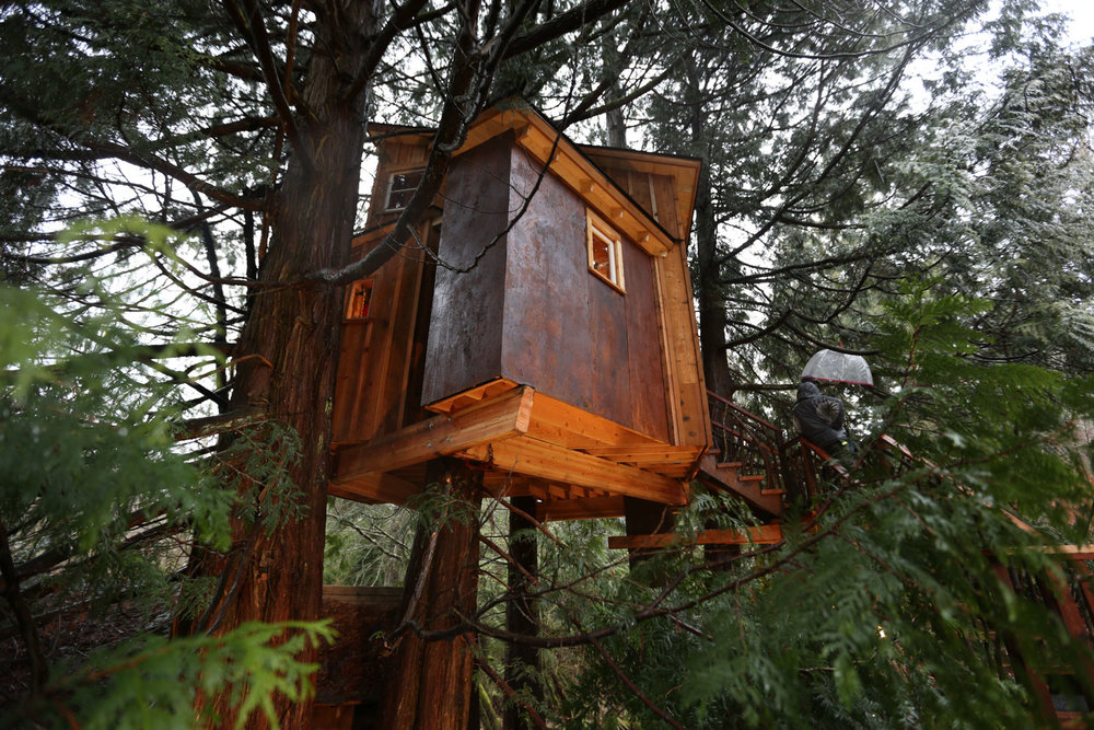 Nelson treehouse recording studio side view