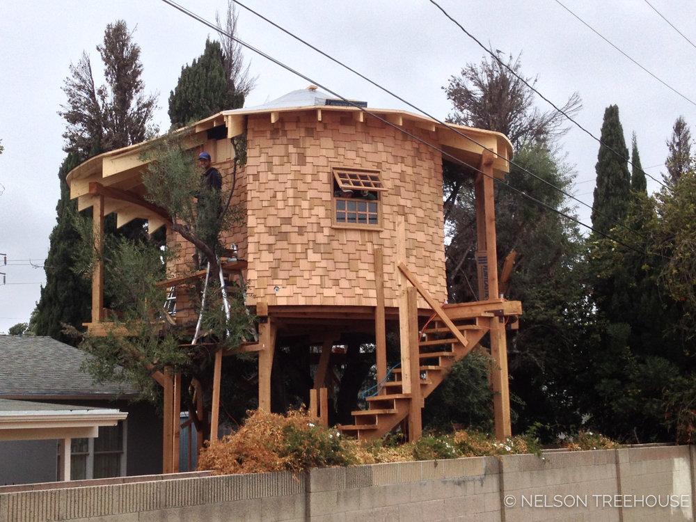 Irish-Nelson-Treehouse-2013-4.jpg