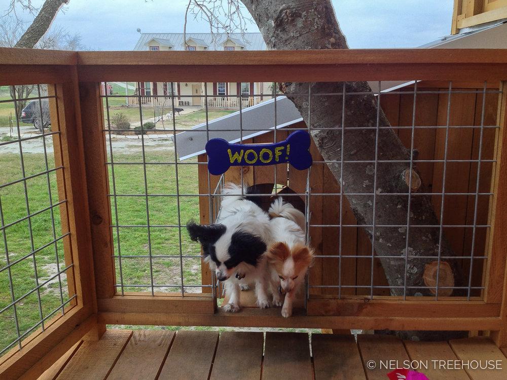 Nelson Treehouse - Twenty-Ton Texas Treehouse dog house