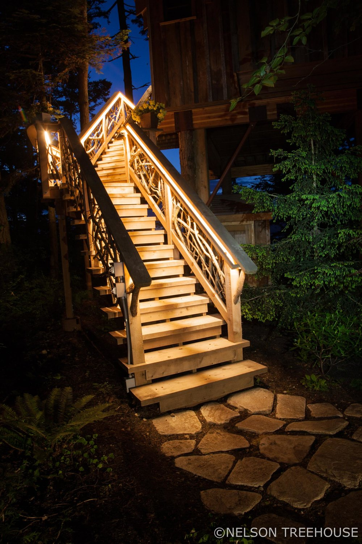 seaside Treehouse - Nelson Treehouse - Night