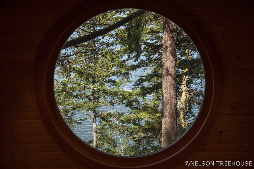 Through the oculus - Nelson Treehouse