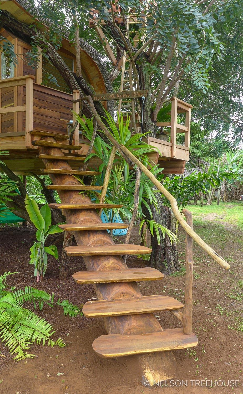 Kauai-Nelson-Treehouse-2018-120.jpg