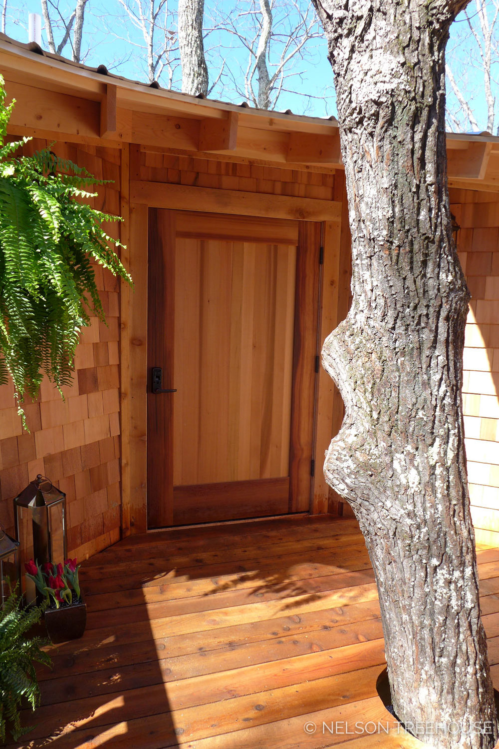 Super Spy Treehouse - Nelson Treehouse 2018 - Front door
