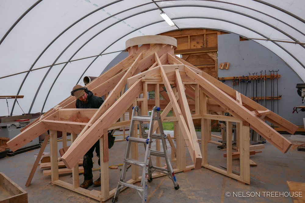 Nelson-Treehouse-Reciprocal_Roof-2.jpg