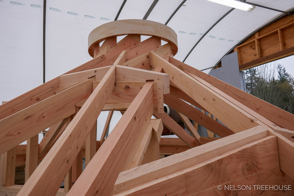 Nelson-Treehouse-Reciprocal_Roof-3.jpg