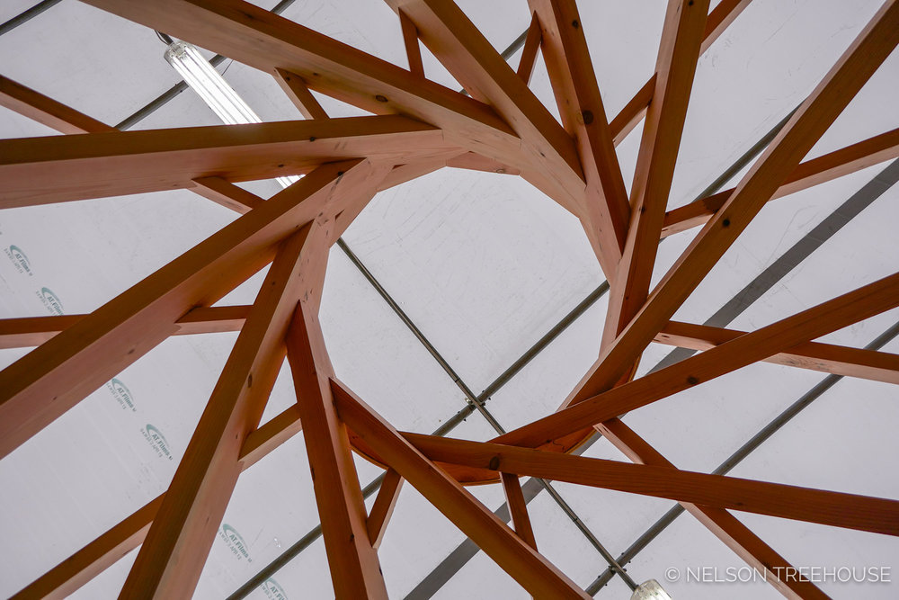 Nelson-Treehouse-Reciprocal_Roof-4.jpg