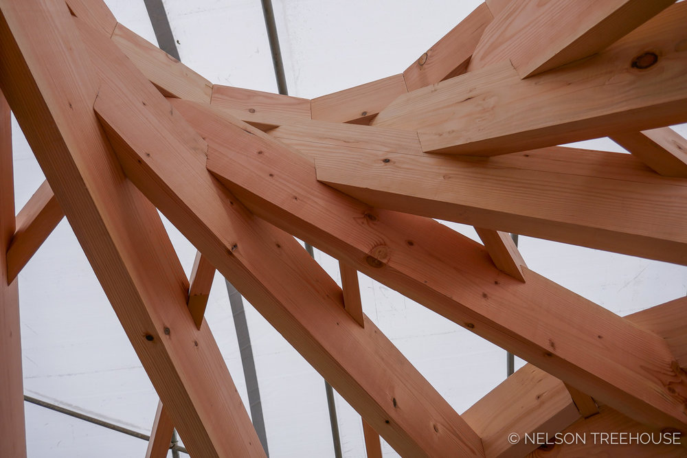 Nelson-Treehouse-Reciprocal_Roof-5.jpg