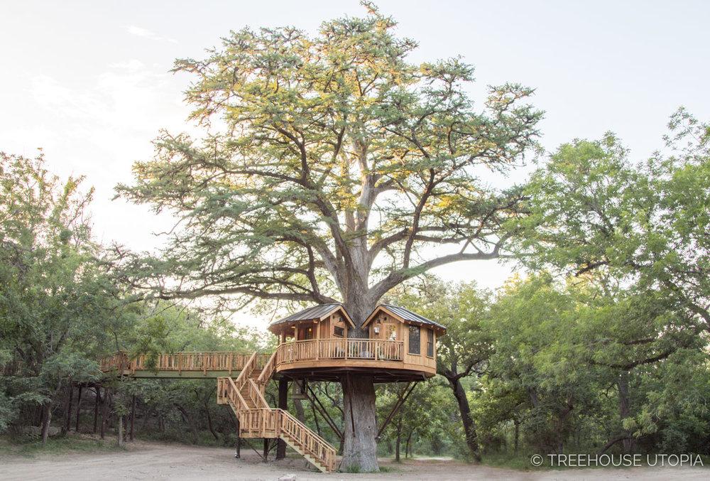 Bibliotheque_Treehouse_Utopia_2018-815.jpg