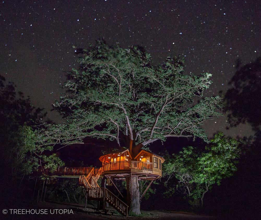 Bibliotheque_Treehouse_Utopia_Night_Photo_2018-88.jpg