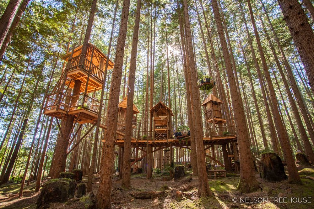 Treetop-Movie-Theater-2018-Nelson-Treehouse-200.jpg