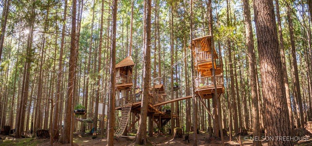Treetop-Movie-Theater-2018-Nelson-Treehouse-295.jpg