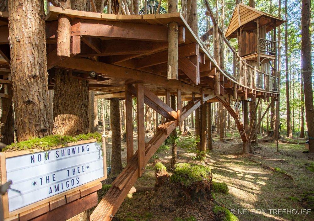 Treetop-Movie-Theater-2018-Nelson-Treehouse-537.jpg