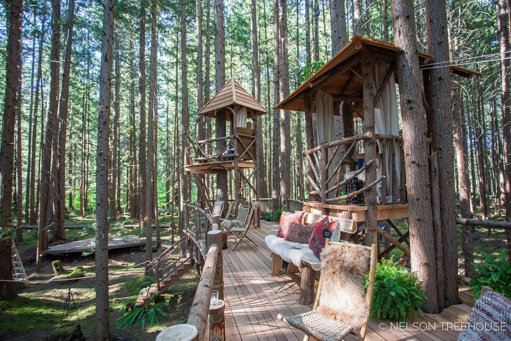 Treetop-Movie-Theater-2018-Nelson-Treehouse-627.jpg