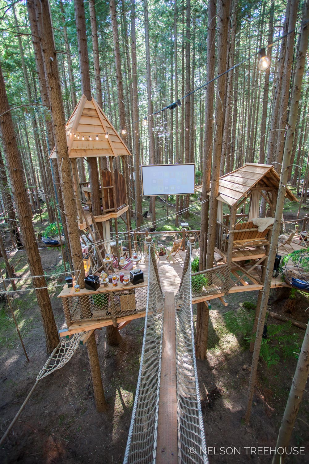 Treetop-Movie-Theater-2018-Nelson-Treehouse-676.jpg