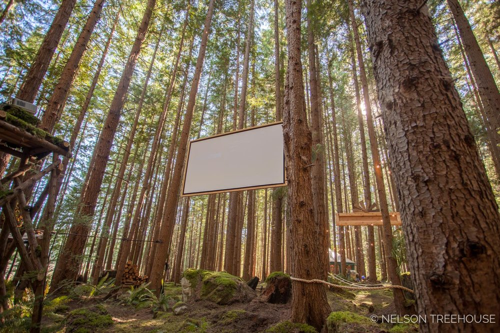 Treetop-Movie-Theater-2018-Nelson-Treehouse-795.jpg