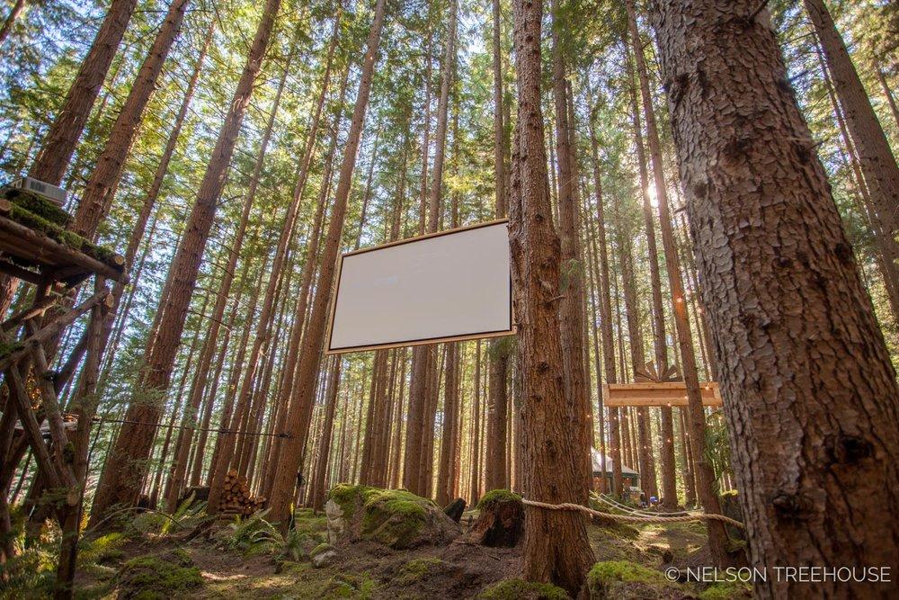 Treetop-Movie-Theater-2018-Nelson-Treehouse-795.jpg