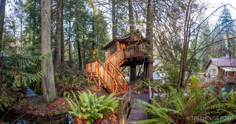 Upper_Pond_TreeHouse_Point_2018-5.jpg
