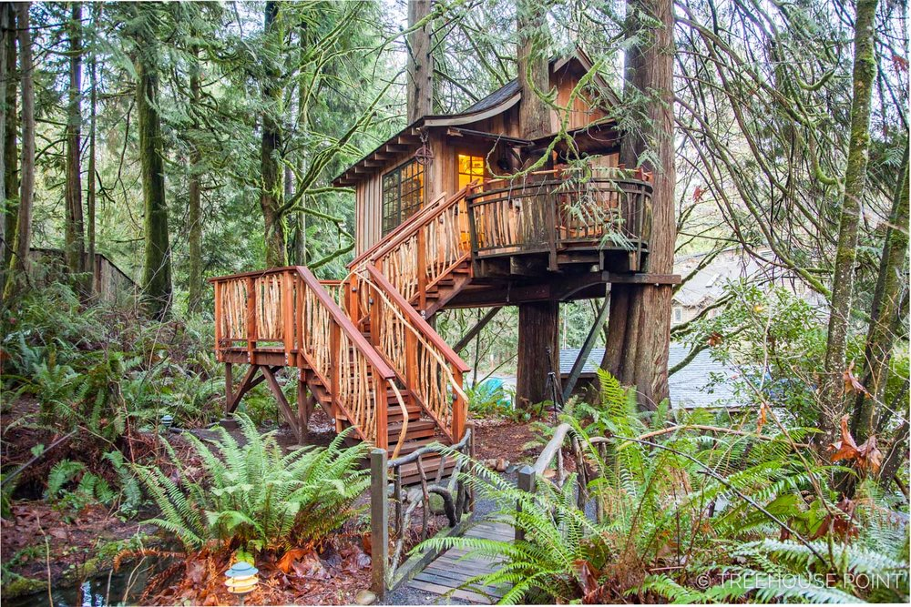 Upper_Pond_TreeHouse_Point_2018-8.jpg