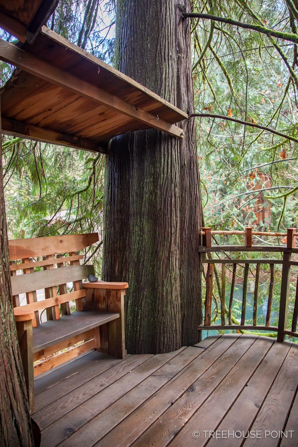 Upper_Pond_TreeHouse_Point_2018-27.jpg