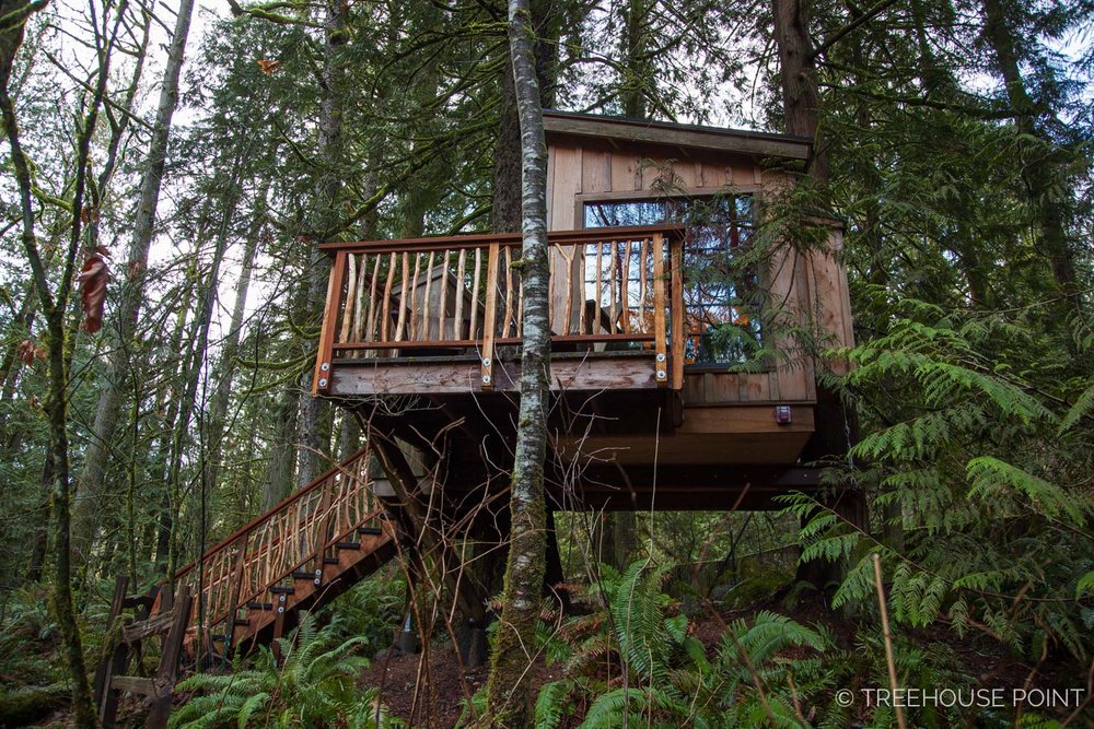 Nest_TreeHouse_Point_2018-10.jpg