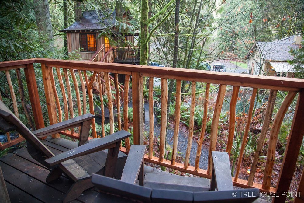 Nest_TreeHouse_Point_2018-43.jpg
