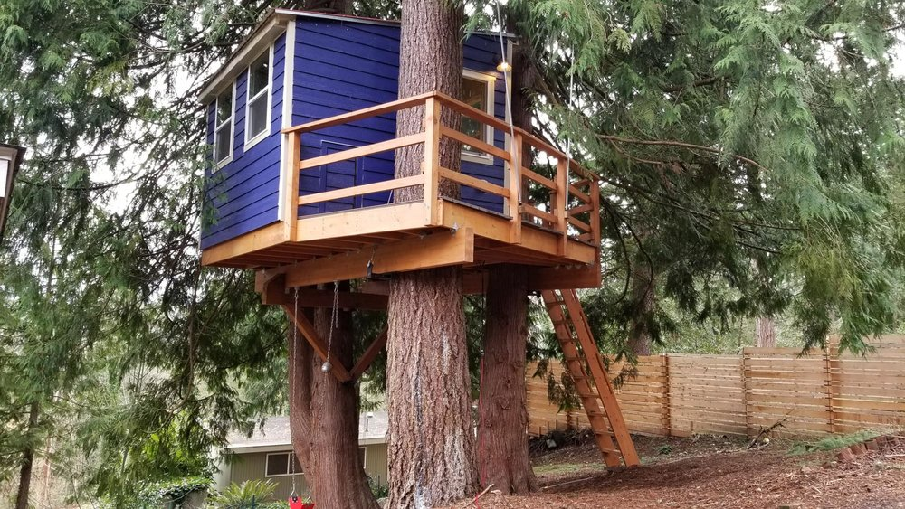 Nelson Treehouse