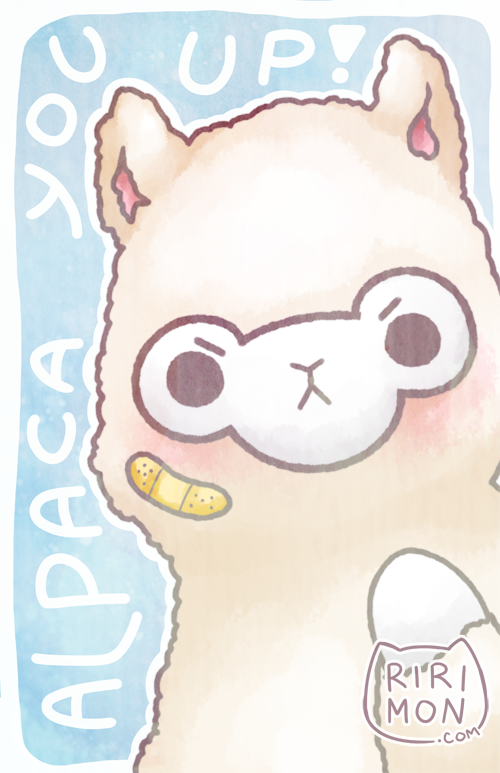 Alpaca You Up, 2014