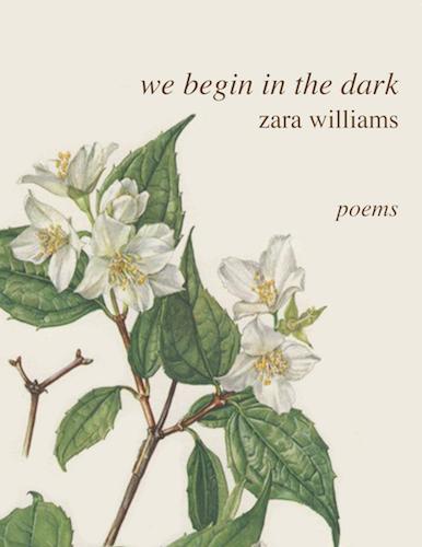 we begin in the dark copy.png