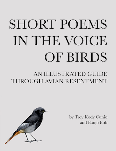 Short Poems In The Voice of Birds_Troy Kody Cunio (dragged) copy.png