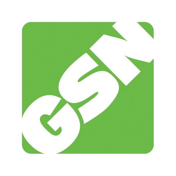 GSN logo.png
