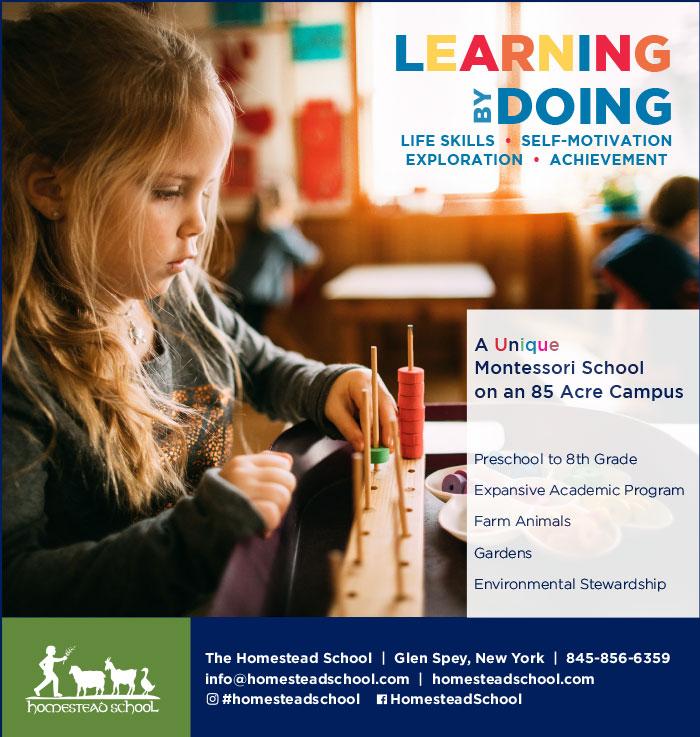 Homestead School | Glen Spey, NY   2019 Print ad for Homestead School