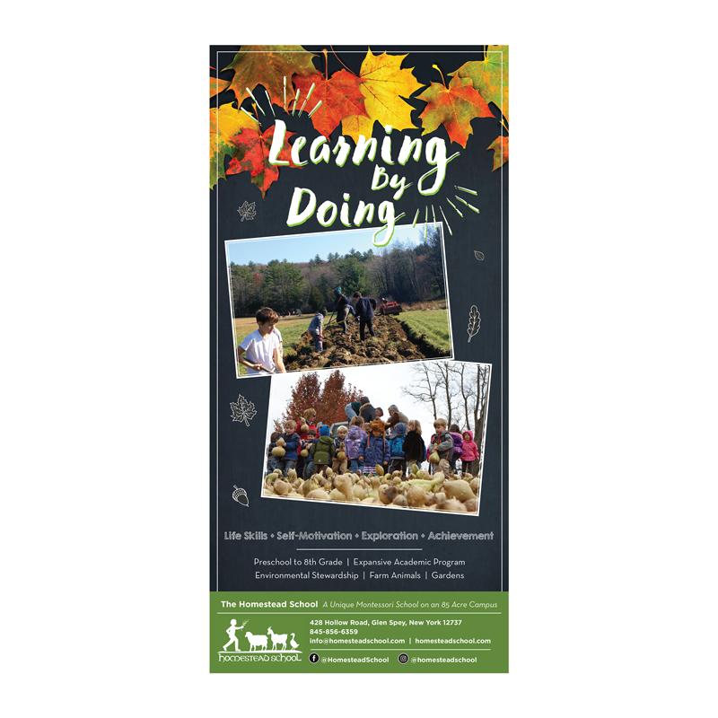2017: Homestead School | Glen Spey, NY   Print ad for Homestead School