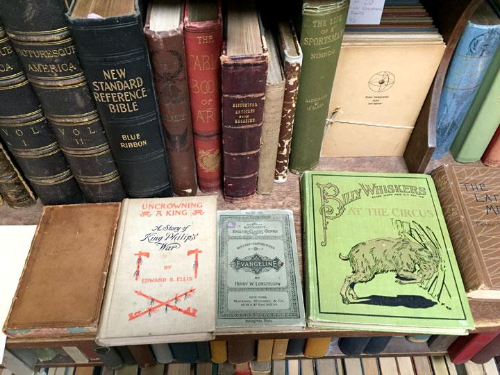BarksBooks_vintagebooks.jpg