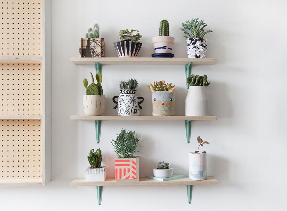 Plant Pot 2016 -