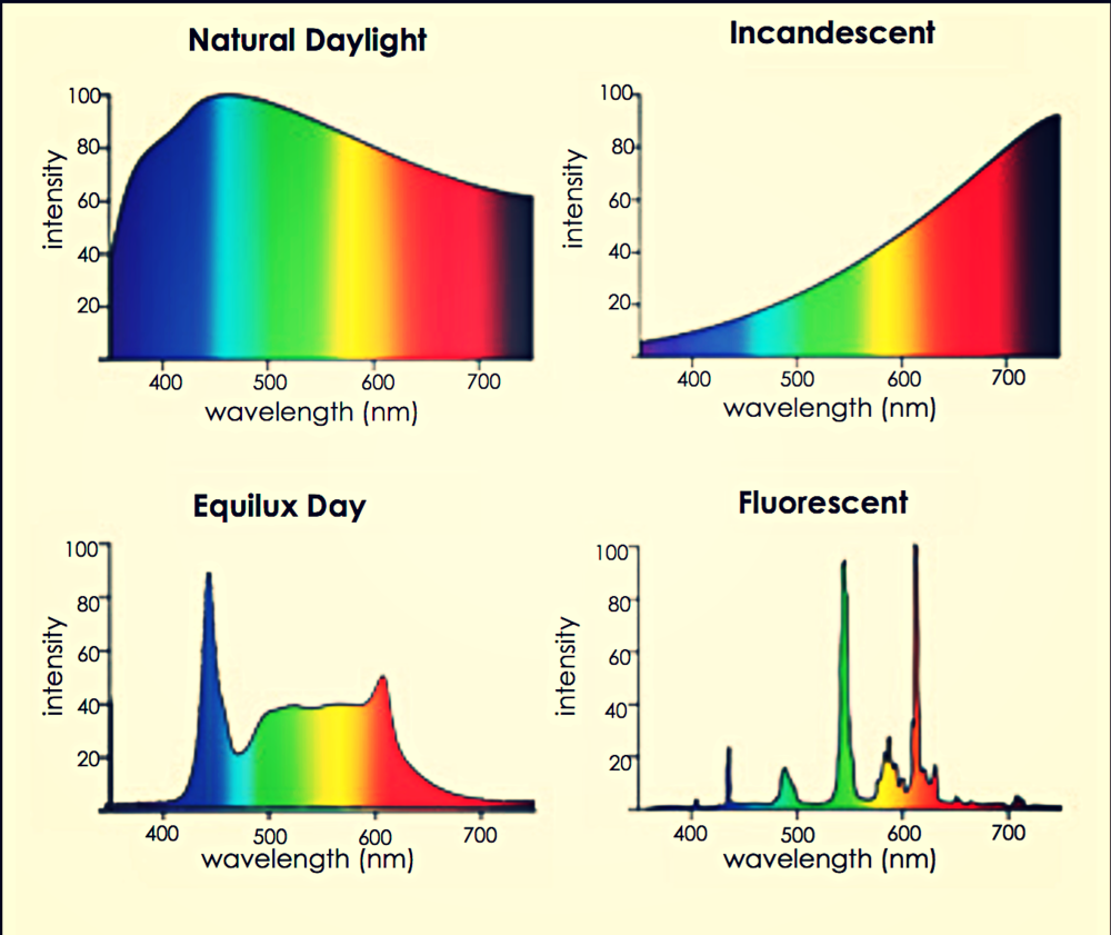 Unlike incandescent bulbs and fluorescent tube lighting, the Equilux system uses light that is enriched in the blue spectrum.This biologically effective light most closely mimics natural daylight.