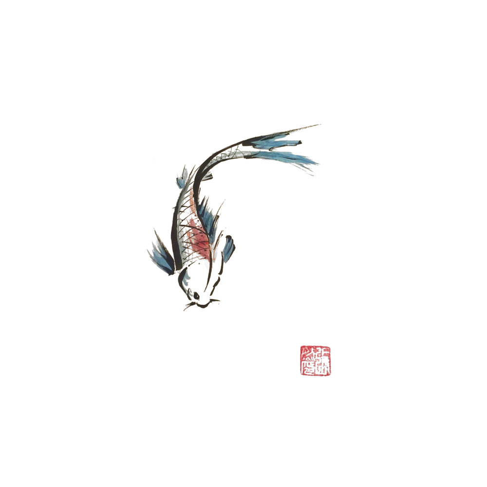 coy fish.jpg