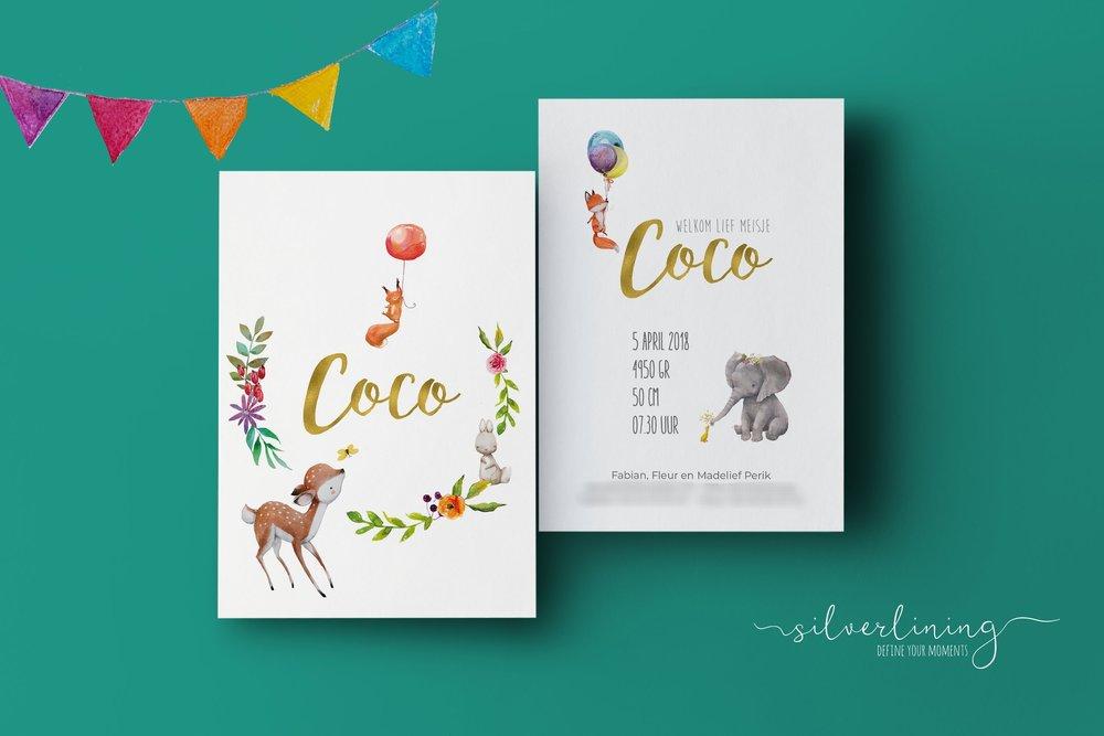 COCO_A6_2.jpg