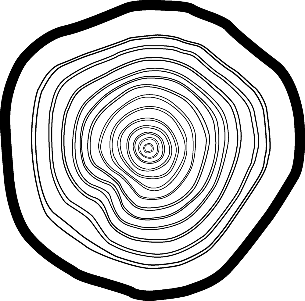 logo blaauwhout klein.png