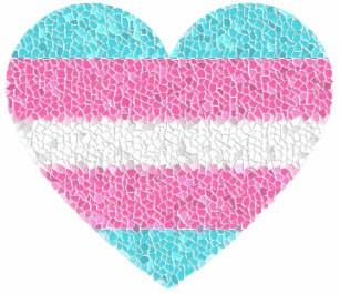 trans heart.jpg