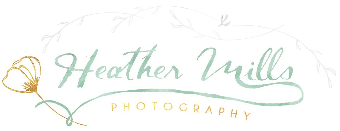 Heather Mills Photography