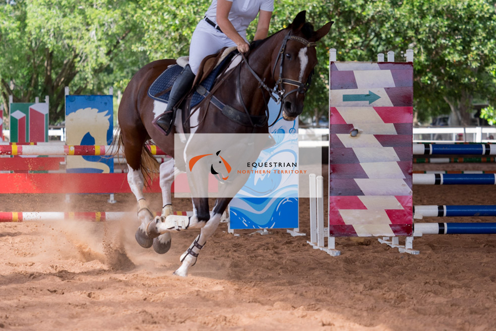 equestriannt_4.jpg
