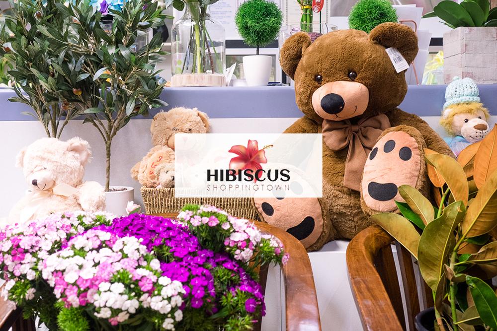 hibiscus_photoshoot_4.jpg