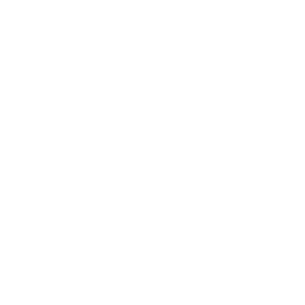 The Catskill Mountain House