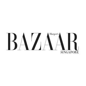 HBSingapore logo.jpg