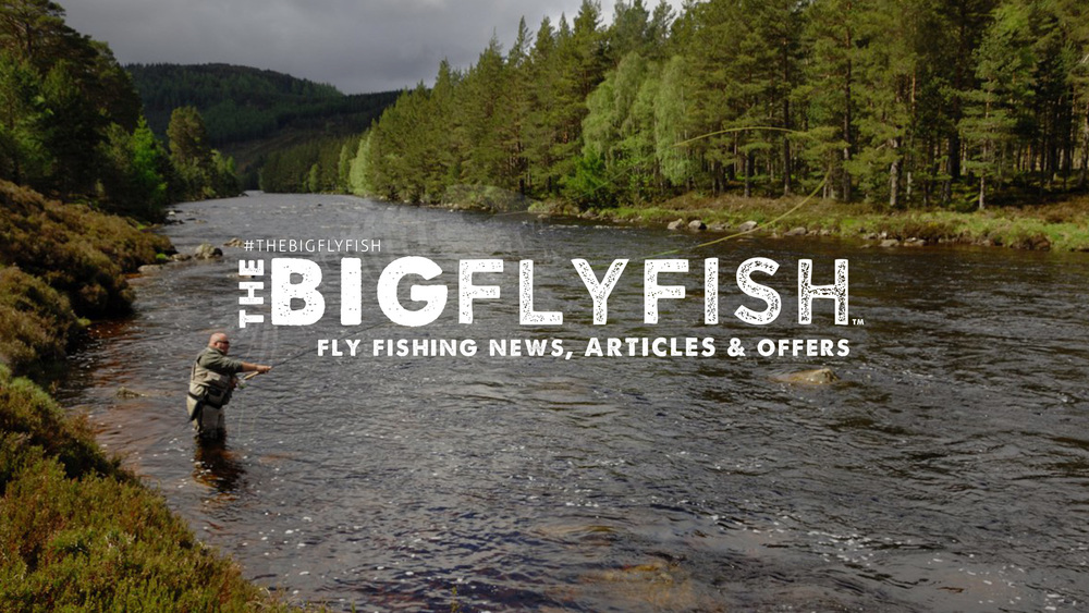 The BIG Fly Fish™ |  Fly Fishing Online