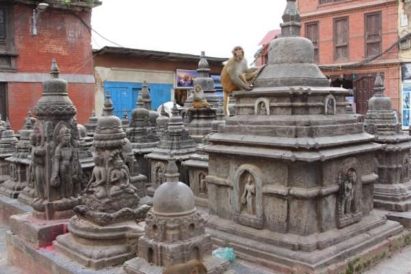 nepal 1.jpeg