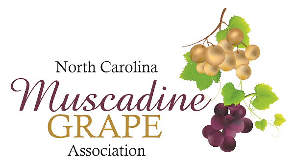 North Carolina Muscadine Grape Association - Muscadine Grape Education - Muscadine Grape Health Benefits