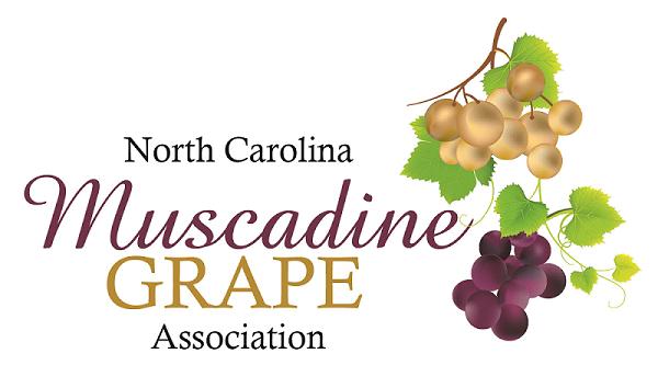 aa312cda2f2 North Carolina Muscadine Grape Association - Muscadine Grape Education -  Muscadine Grape Health Benefits