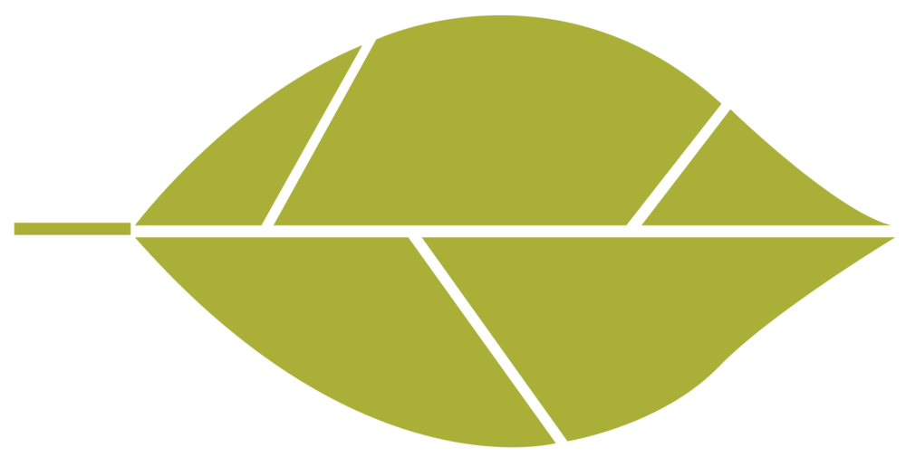 IndividualLeaves-06-e1507651954646.png