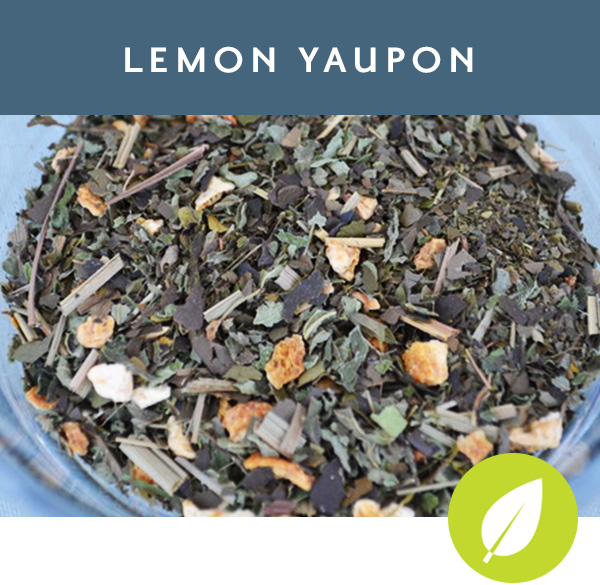 LEMON YAUPON Coastal Carolina Tradition Yaupon with lemon peel, lemon balm and lemongrass
